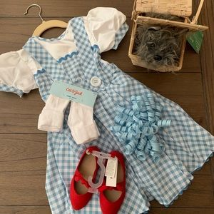 Other - Toddler Girl Dorothy Costume (Size XS 2-3)
